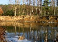 Утки на речке