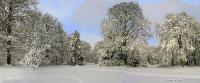 Зимние узоры. Автор фото: Валерий Афанасьев
