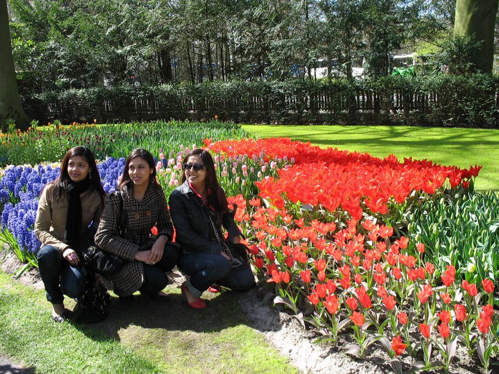 Парк цветов, Нидерланды . Автор фото: Валерий Афанасьев