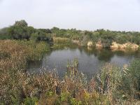 Озёра в районе поселения Ницан