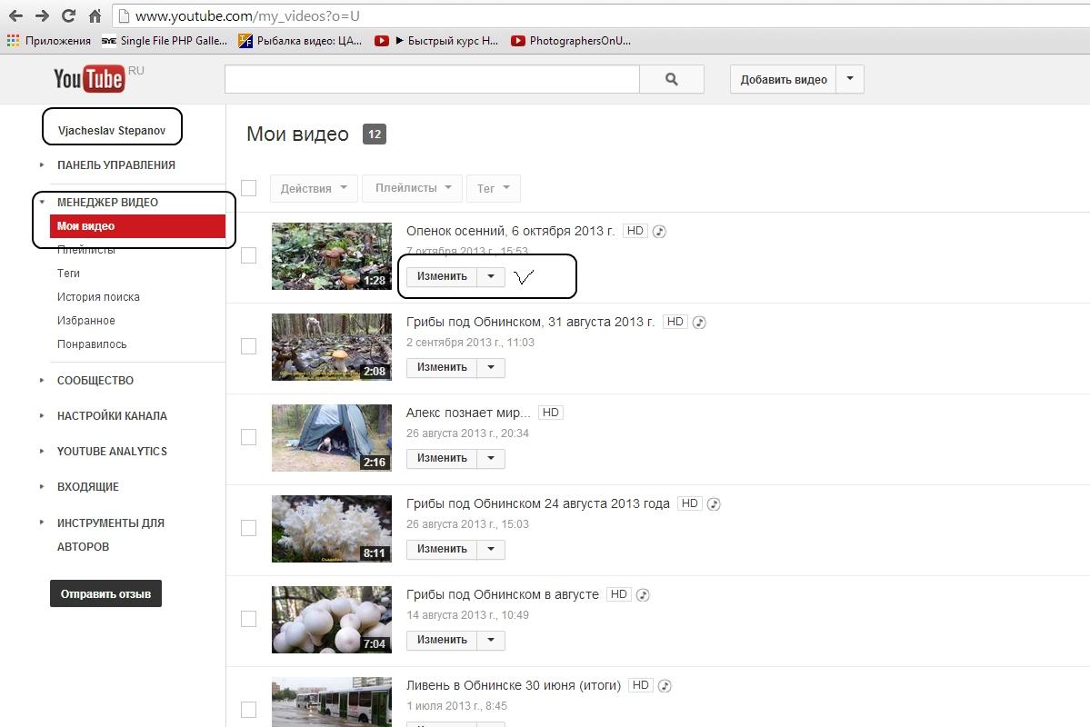 Подключение звуковой дорожки с Youtube. Автор фото: Техподдержка