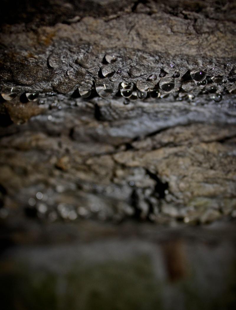 Кольцовские пещеры. Автор фото: Юлия Свиткова