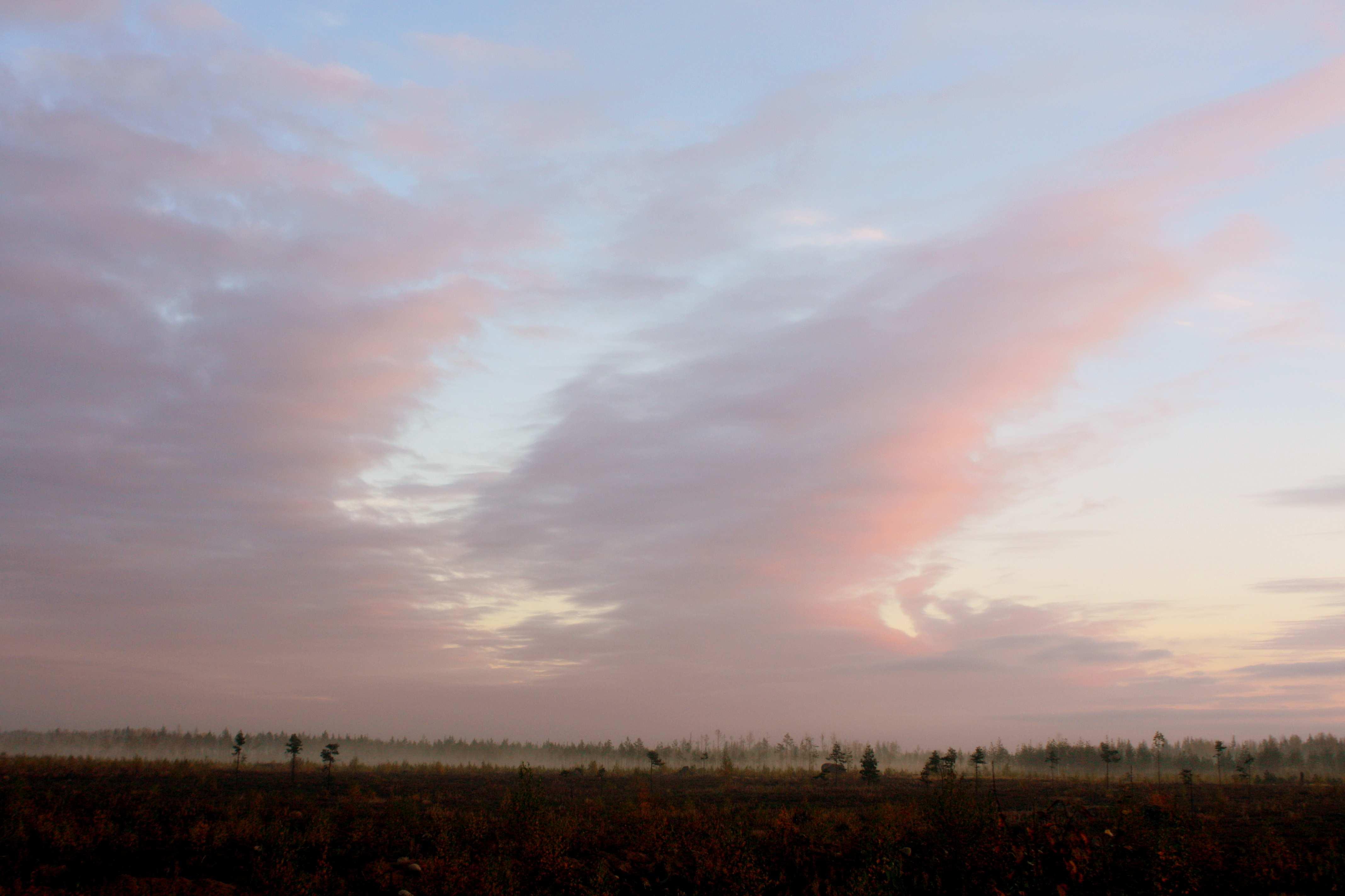 Осеннее утрo. Автор фото: Йохан Метте