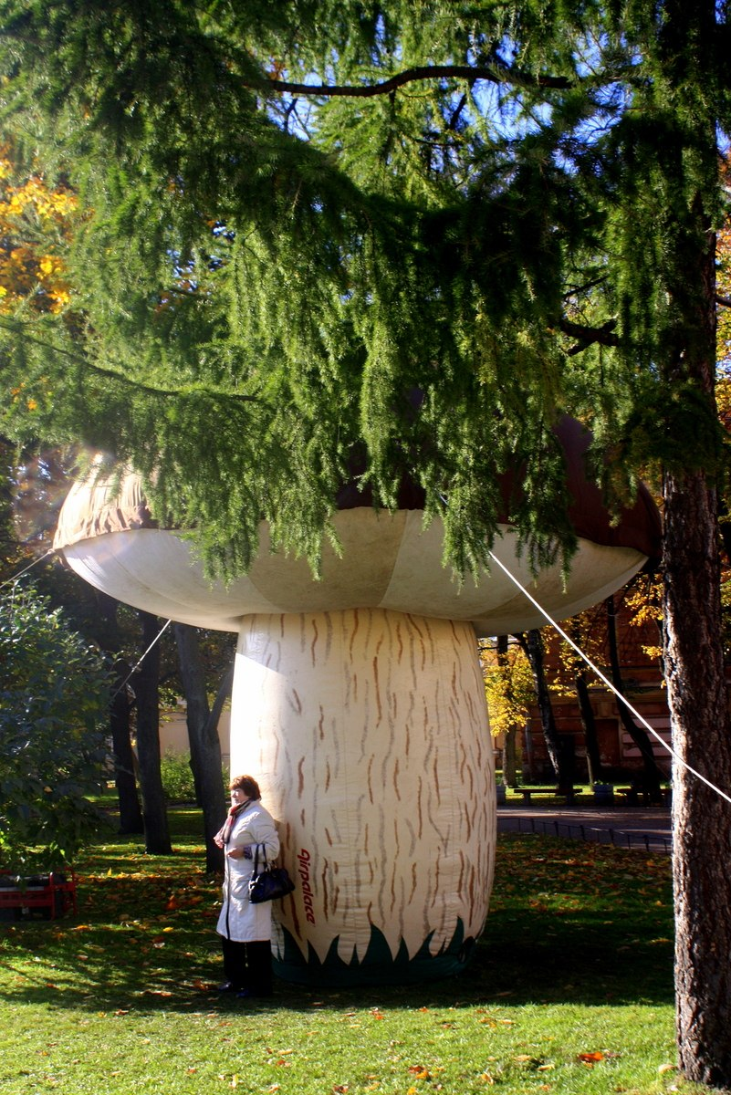 Фестиваль Грибoв и ягoд. Юсупoвский сад. Автор фото: Йохан Метте