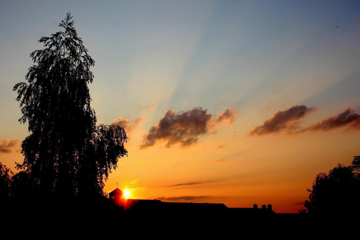 Лучи вечернего солнца. Автор фото: Йохан Метте