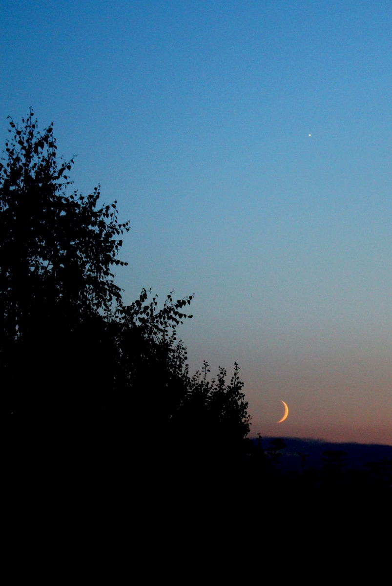 Молодой месяц и Вечерняя звезда. Автор фото: Йохан Метте