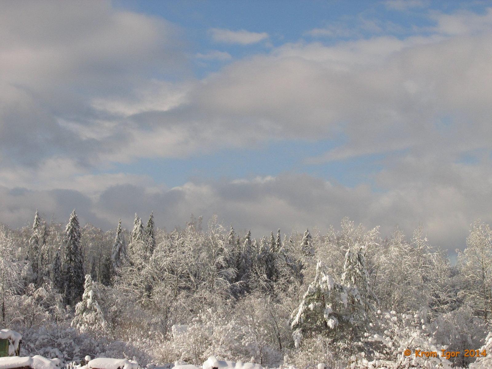 Жаровск. Середина октября 2014 г.. Автор фото: Кром Игорь