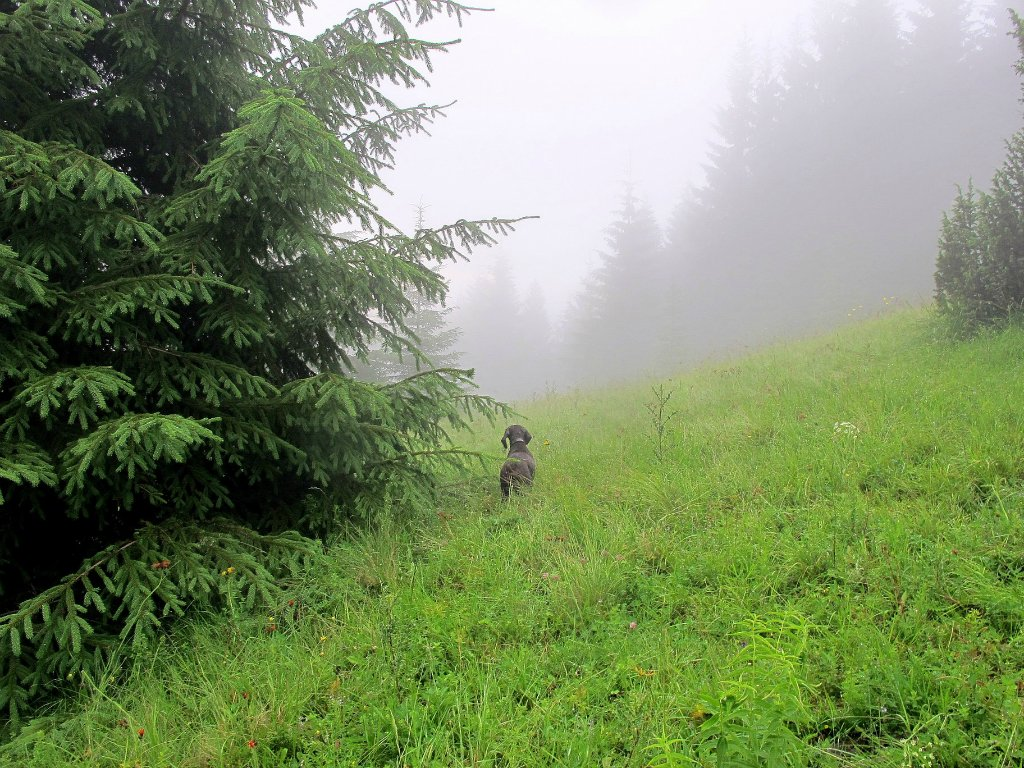 Ник в горах. Автор фото: Сергей Козлан