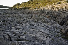 Каменистый берег залива