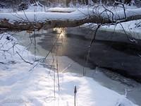 Чёрная речка (Black river)