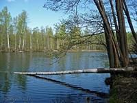 Озерцо без названия