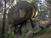 NSW. National Park - Bald Rock.