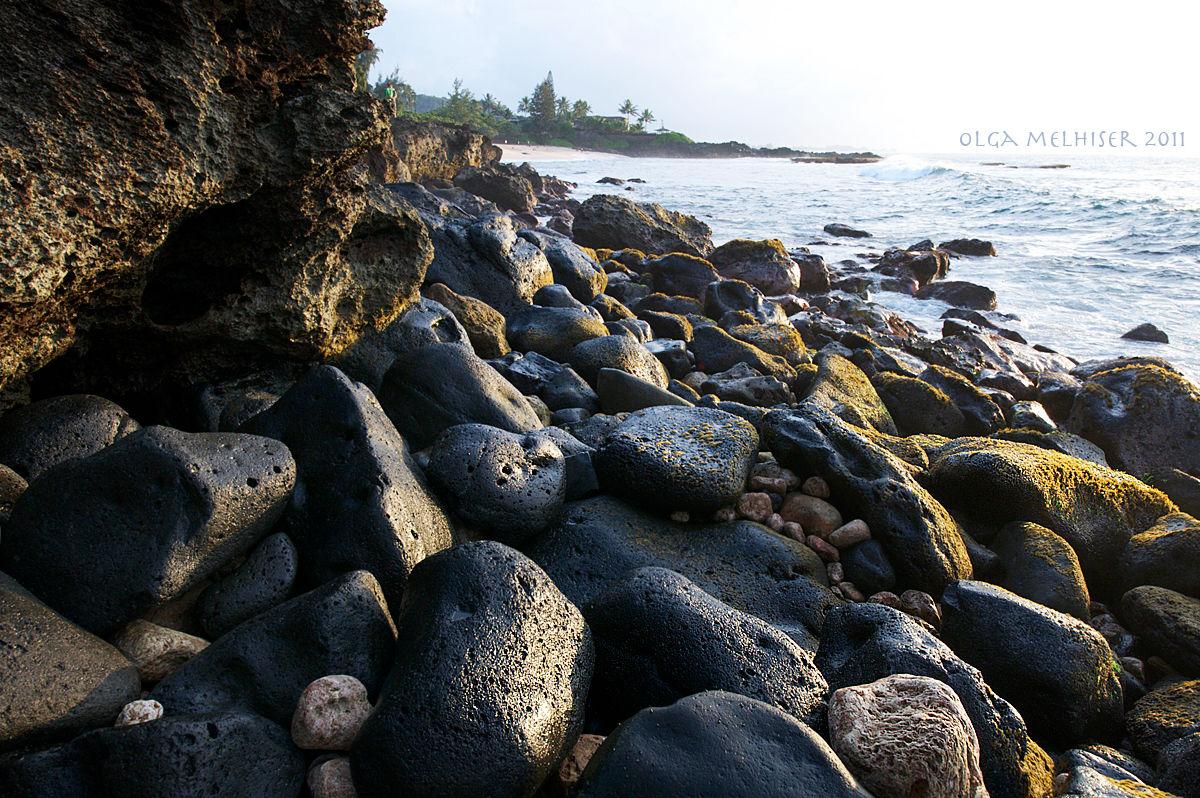 Северное побережье Оаху. Автор фото: Ольга Мелхайзер