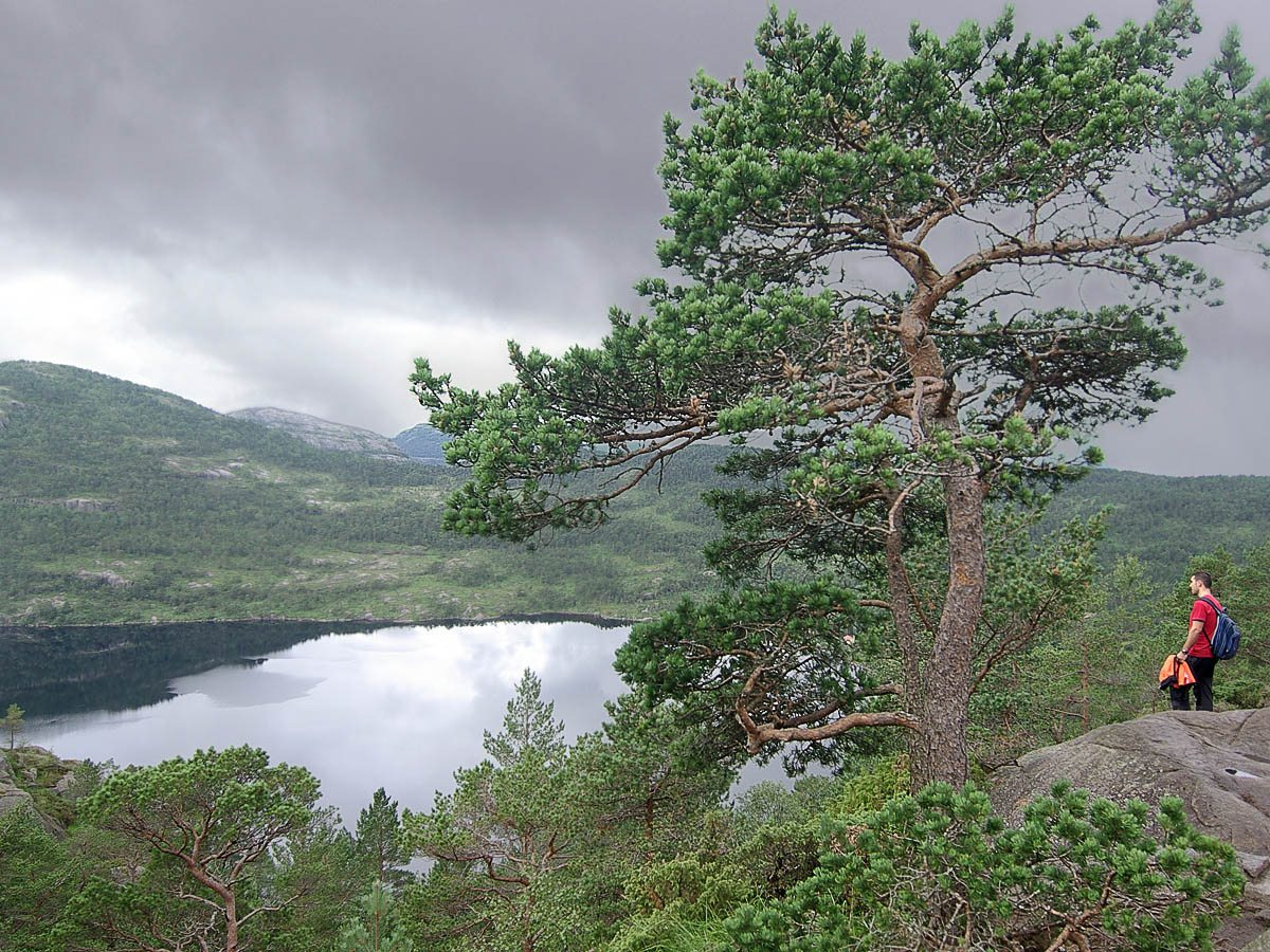 В горах Норвегии 1. Автор фото: Юрий Семенов