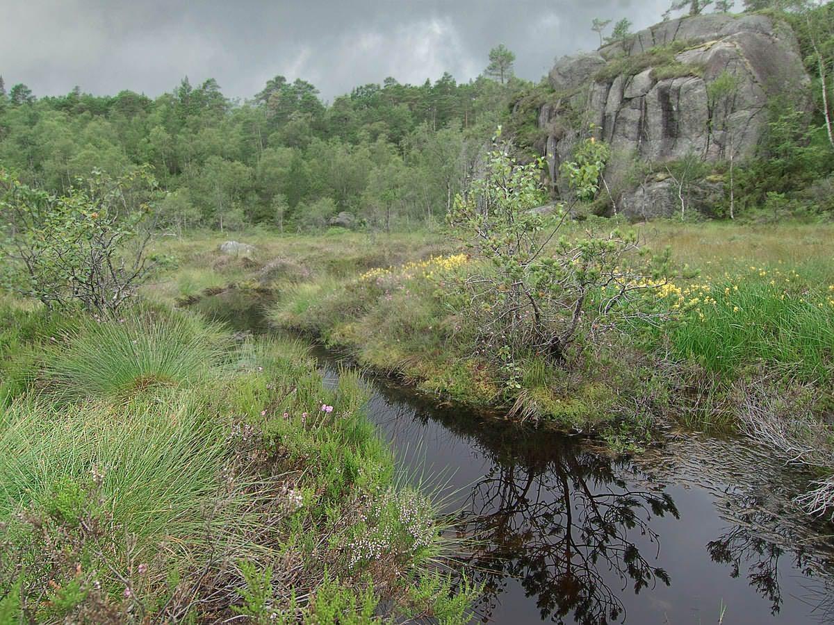 В горах Норвегии 2. Автор фото: Юрий Семенов