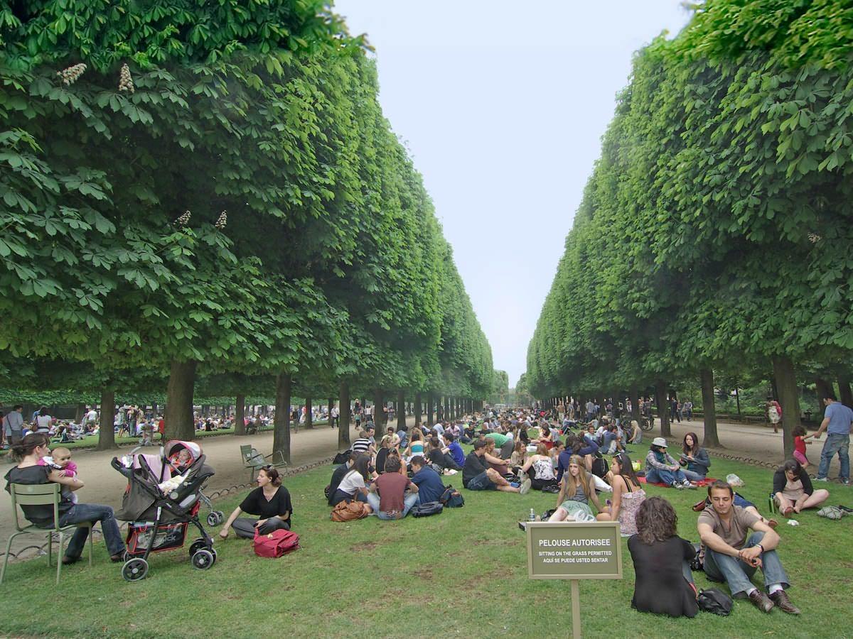 В жаркий день в Люксембургском саду Парижа. Автор фото: Юрий Семенов