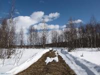 март. Автор фото: Константин Ширяев