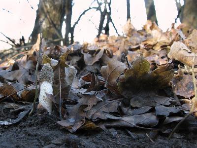Ставропольский край Автор фото: Ирина Уханова