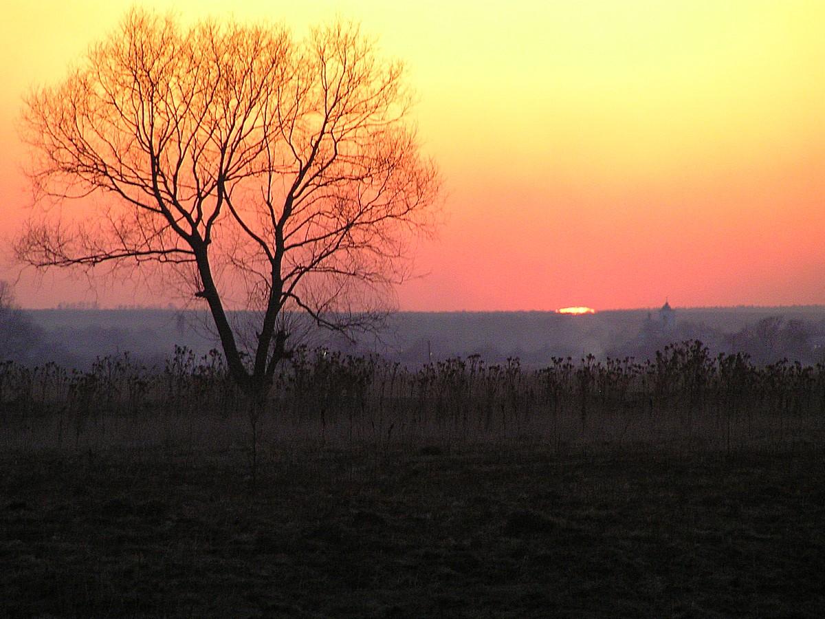 Закат в марте. Автор фото: Вишератин Константин
