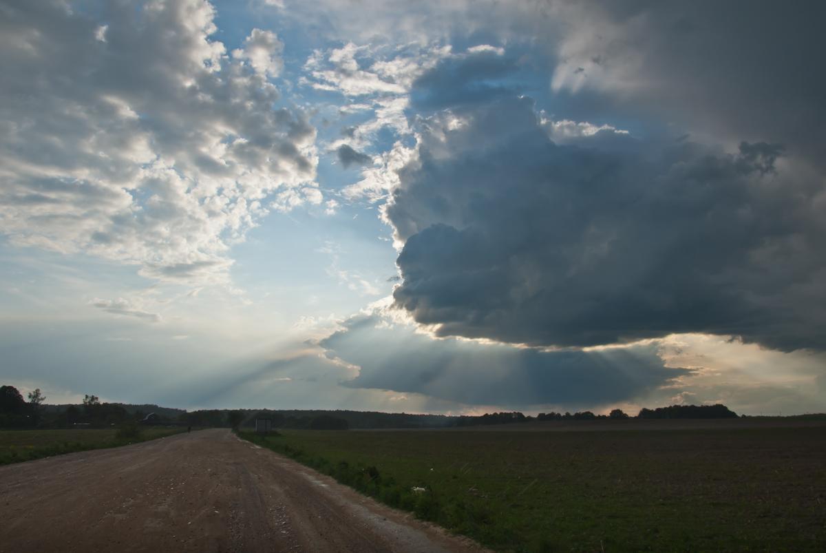 После дождя. Автор фото: Степанов Вячеслав (г.Обнинск)