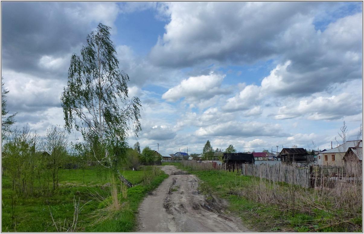 Западный ветер. Автор фото: Аполлонов Сергей (г.Шумерля)