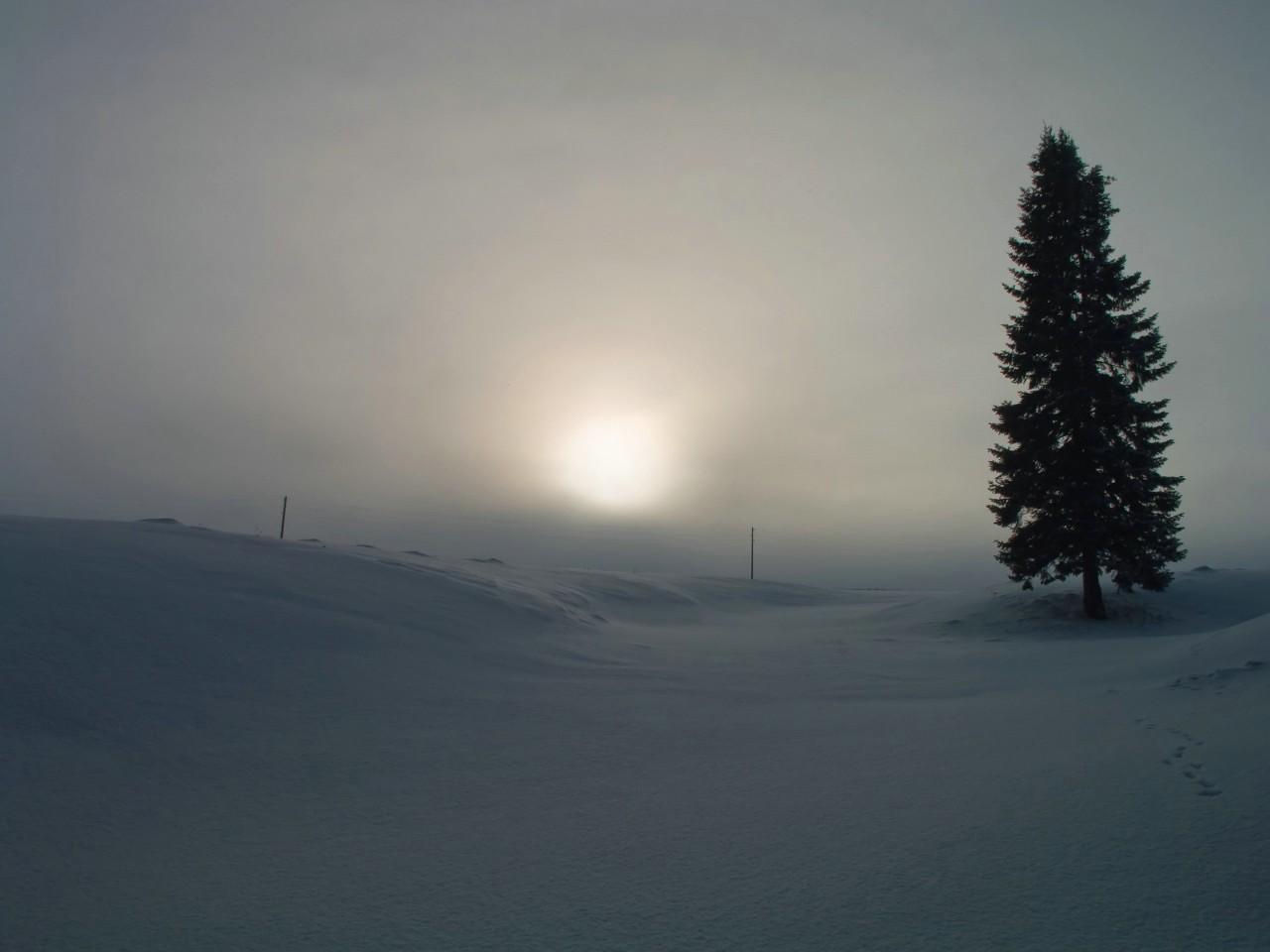 Зимний лог. Автор фото: Капитонов Владимир, г.Ижевск