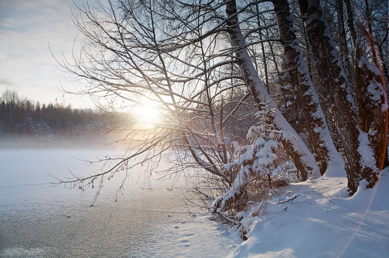 Туман над озером. Автор фото: Крутоверцев Станислав, г.Санкт-Петербург